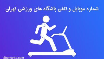 شماره موبایل و تلفن باشگاه های ورزشی تهران