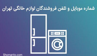 شماره موبایل و تلفن فروشندگان لوزام خانگی تهران